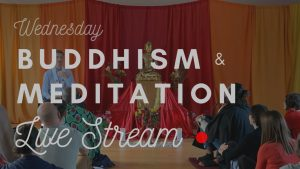 Buddhism & Meditation